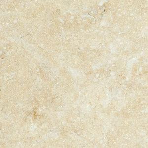 Seashell Honed Limestone Tiles 10x10