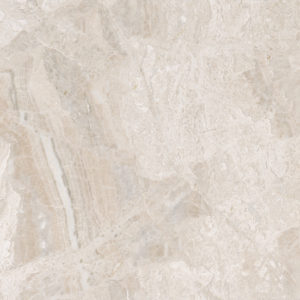 Diana Royal 3/4 Honed Marble Tiles 61x61
